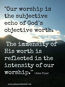 worship and worth Piper