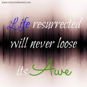 Life Resurrected
